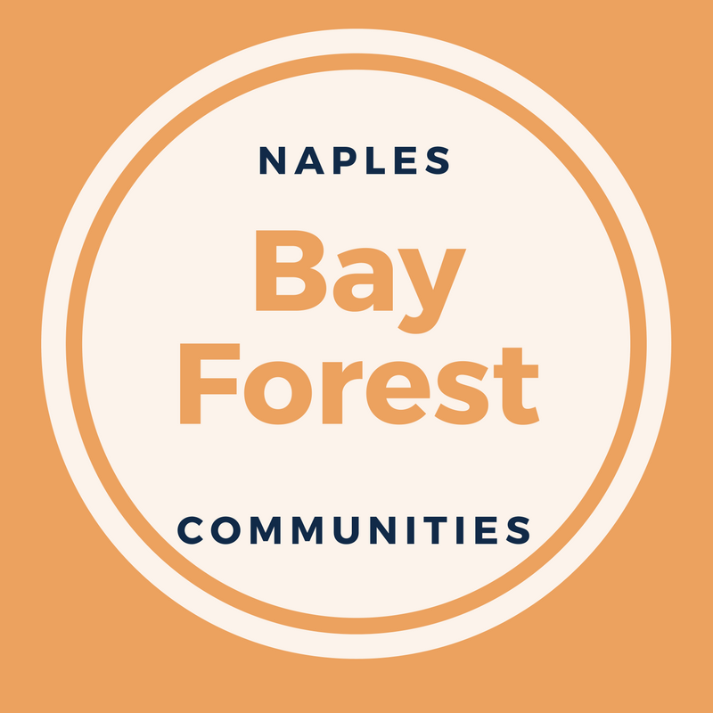 bay-forest-logo