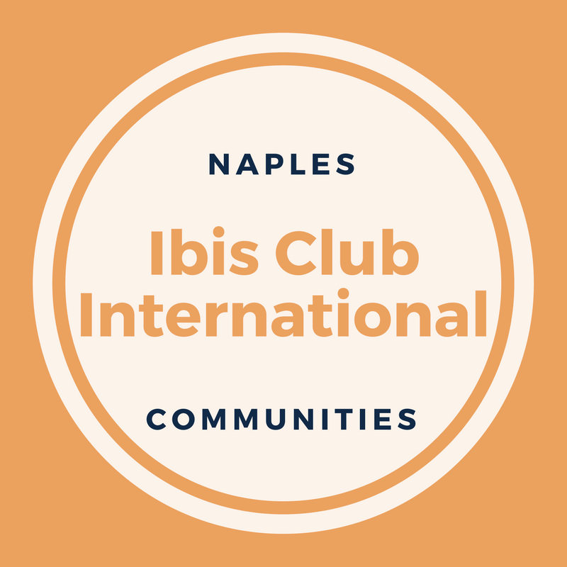 ibis-club-international-logo